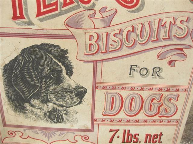 Old Shop Stuff Old Card Pet Shop Sign For Terrier Dog